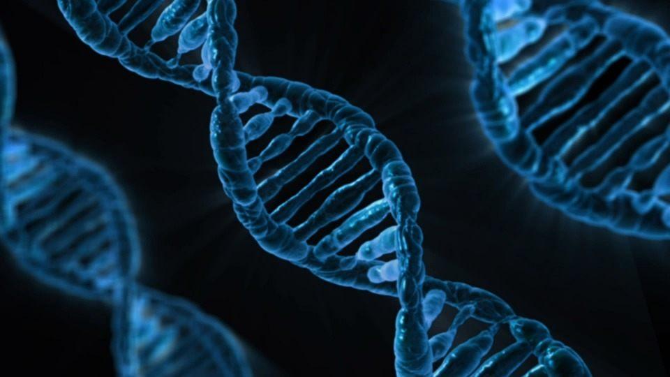 [INFOGRAPHIC] MCAT Biology Mnemonics