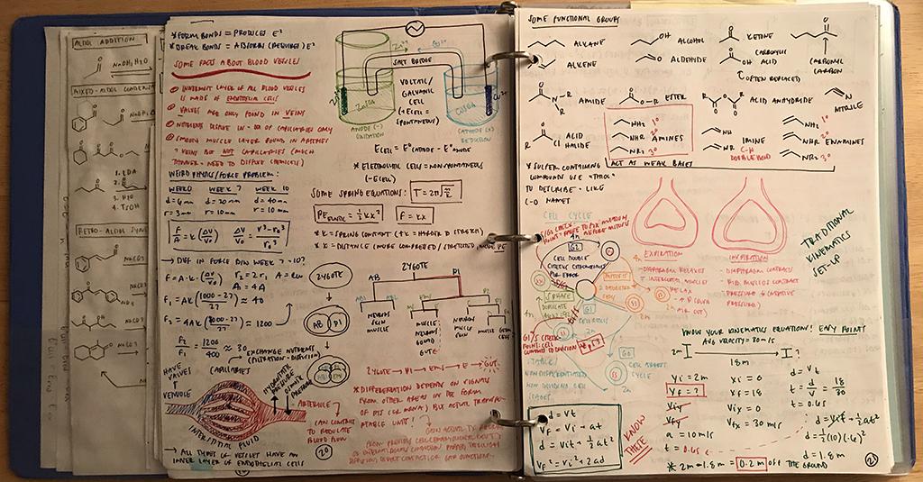 lindsay's mcat worksheets